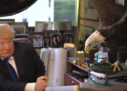 If DONALD TRUMPs Gonna Try And Run This World, He Needs To Know How To Fly With Eagles